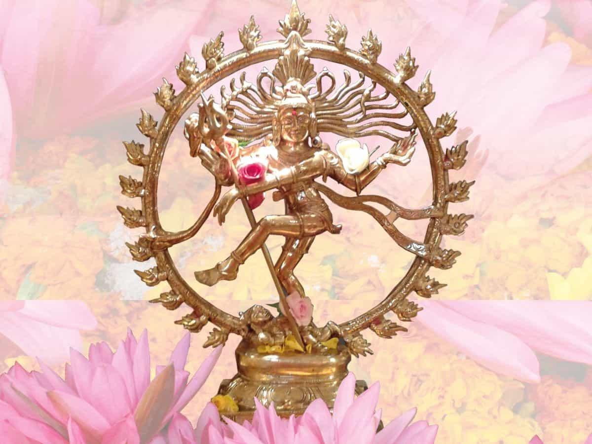Live Online-Kurs: Siva's Weisheit